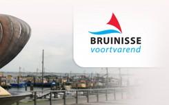 bruinisse-voortvarend-logo-dorpsraad-bruinisse