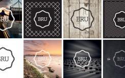 toepassingen-puur-bru-logo